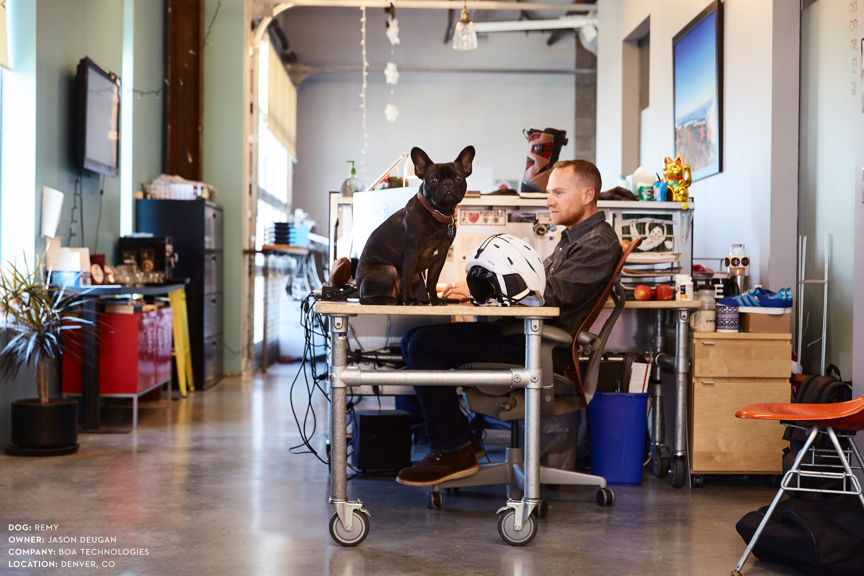 Dogs at work: Jason and his dog, Remy at Boa Technologies