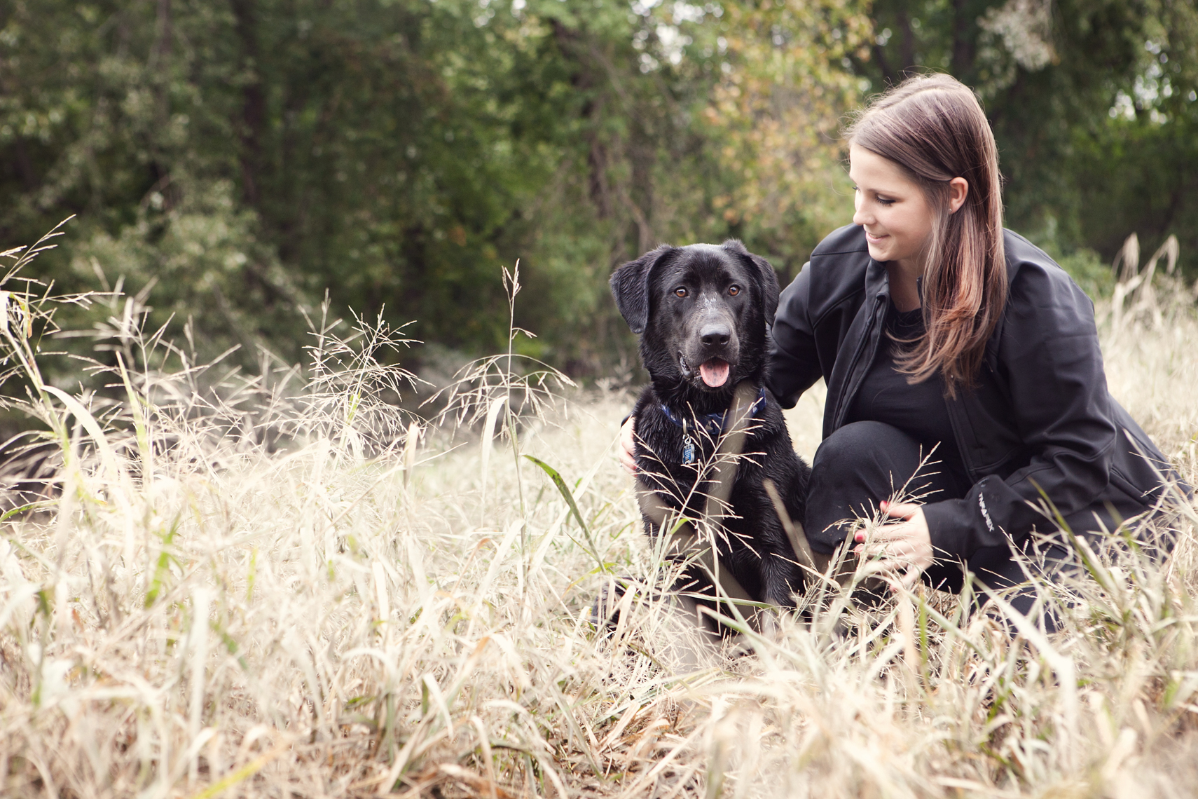Black Lab in tall grass with his owner