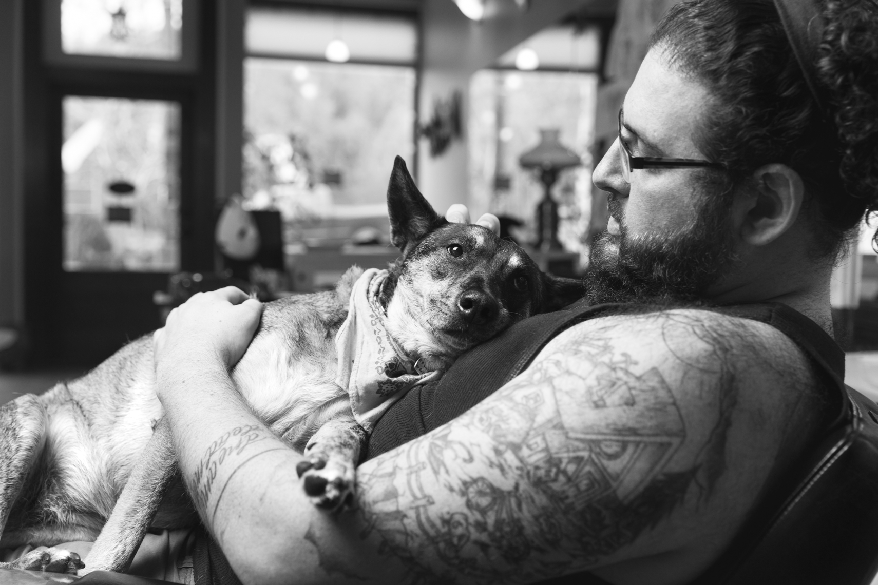 Dogs_with_tattooed_owners_17