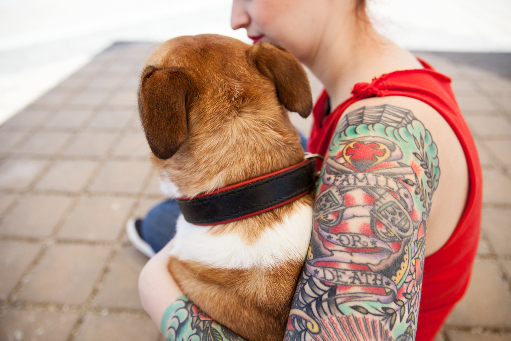 Dogs_with_tattooed_owners_24