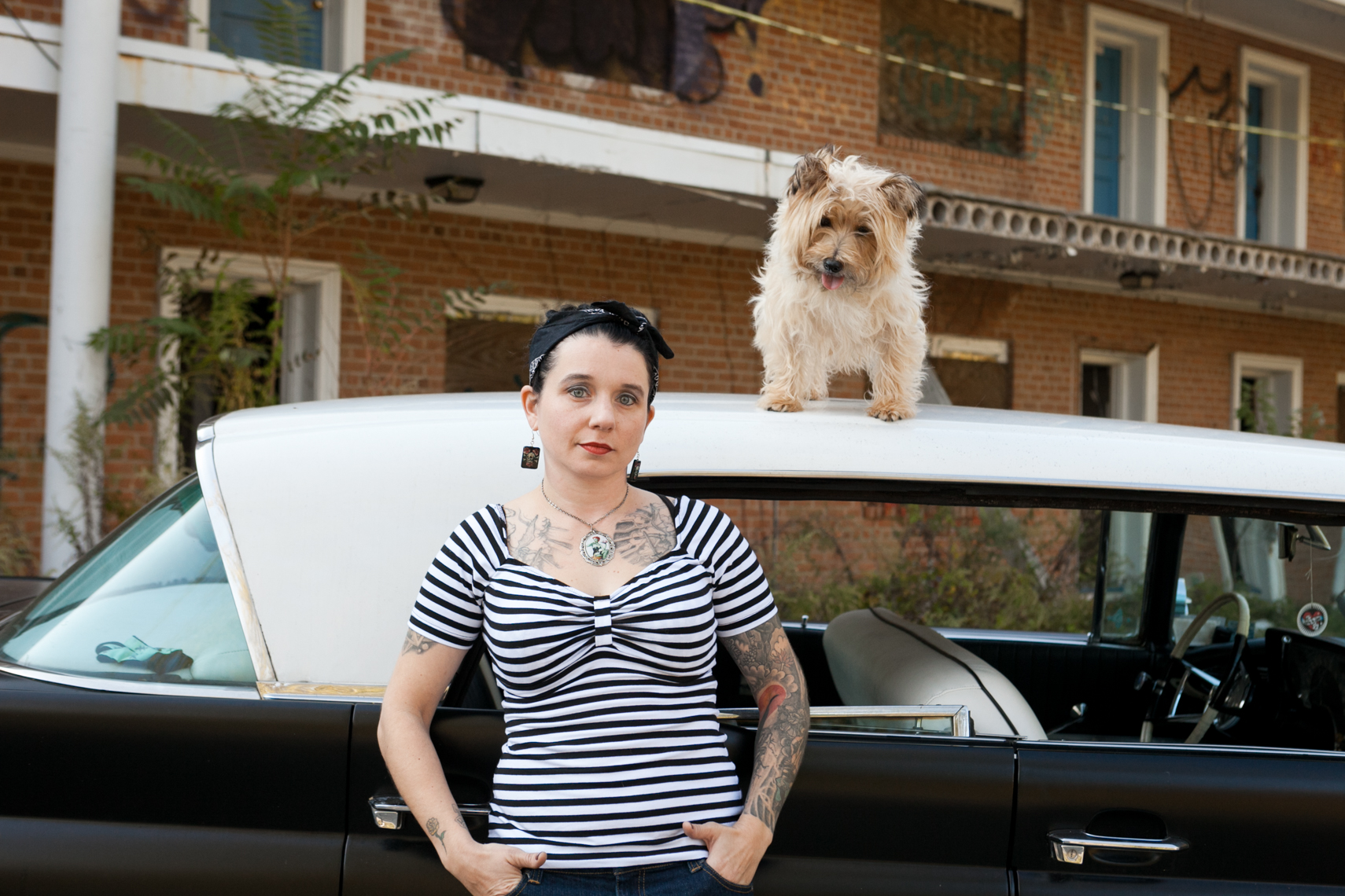 Dogs_with_tattooed_owners_31