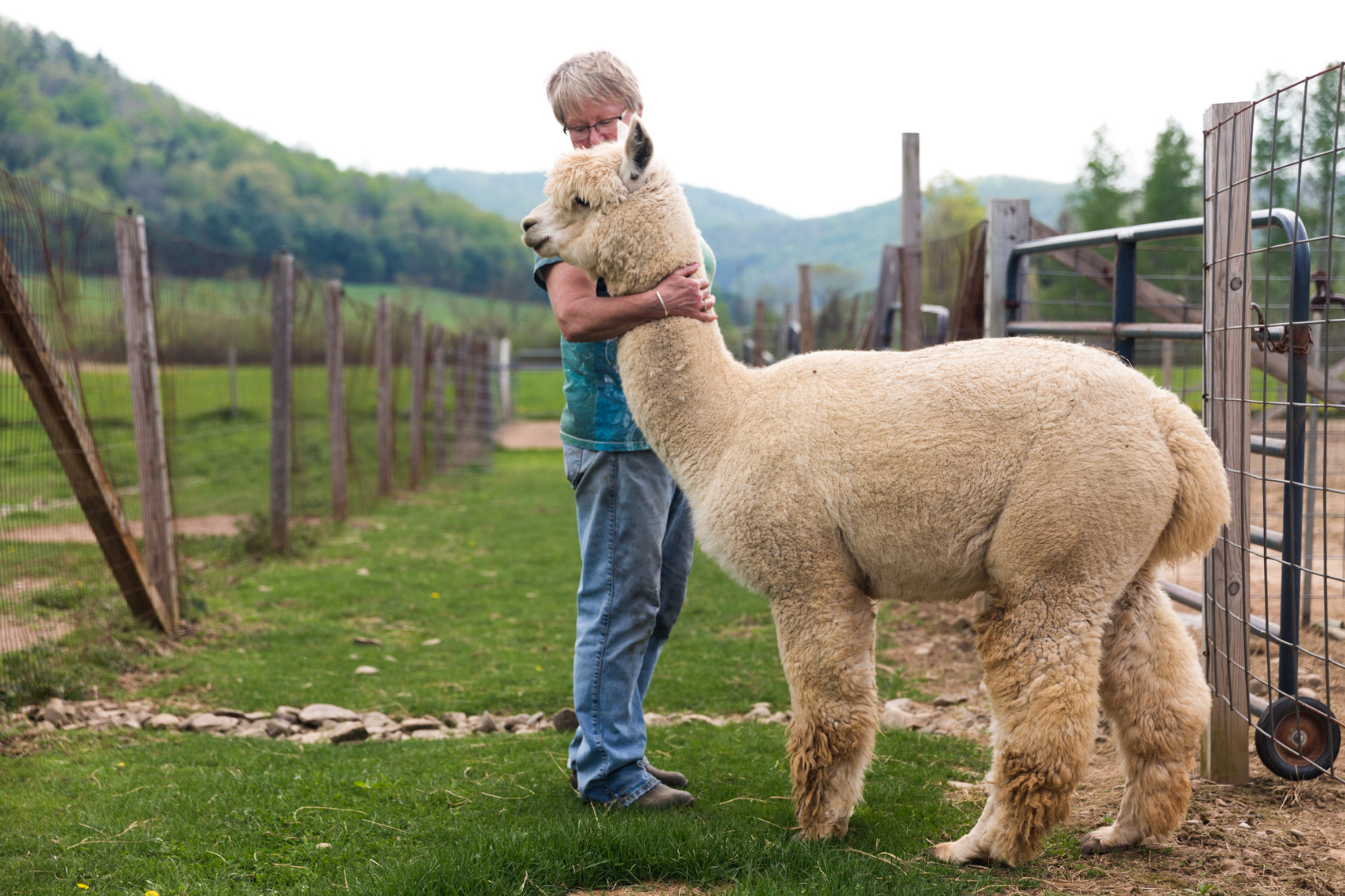 Owner and Alpaca portrait