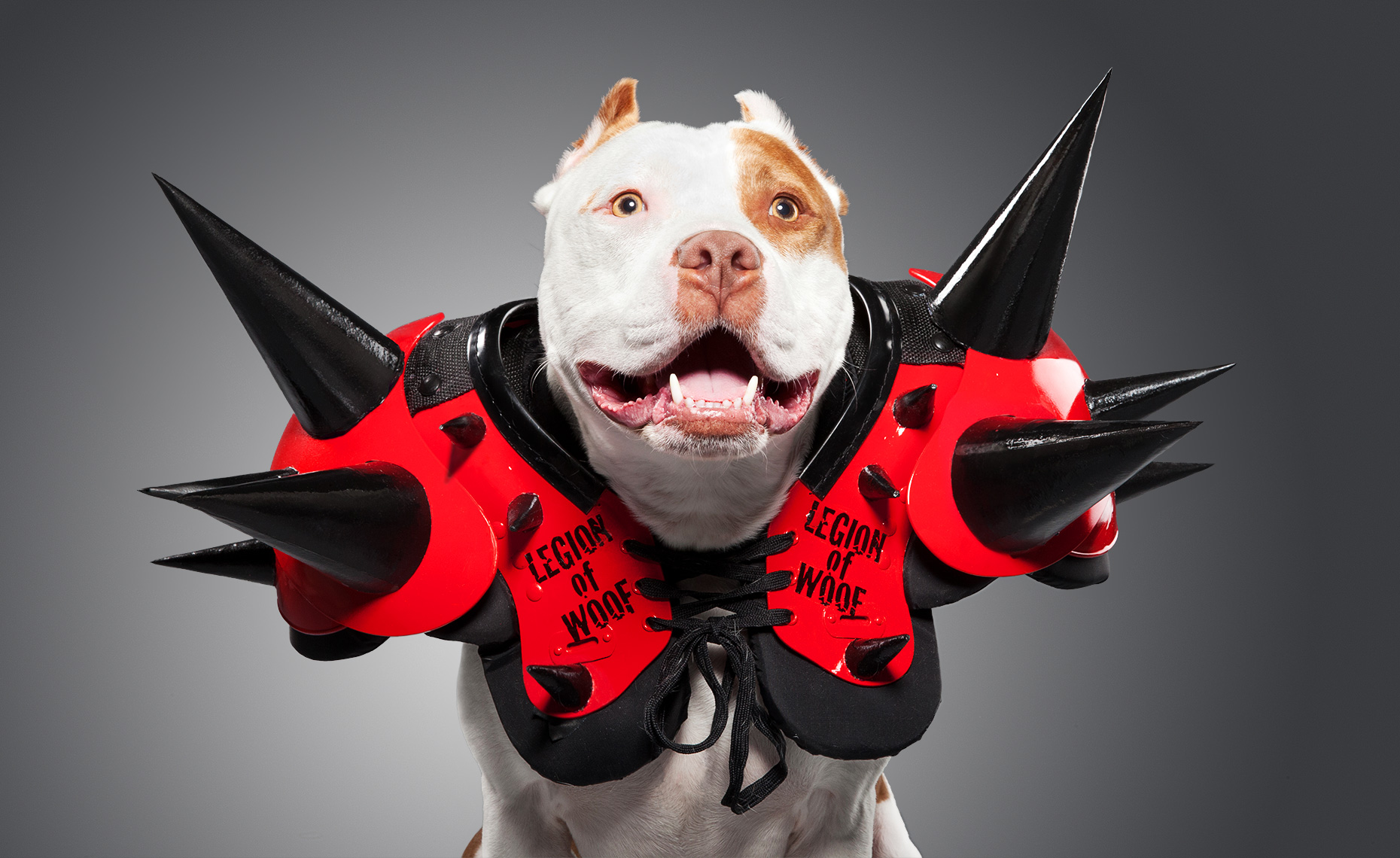 Pit Mix as Legion of Doom